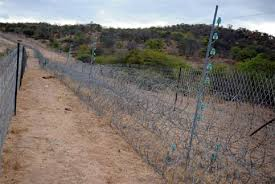 Image result for South Africa to build 40km fence along Zimbabwe border