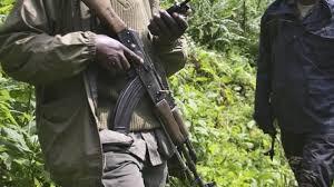 12 Rangers Among 17 Killed in Congo Park Ambush - glbnews.com