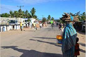 AU calls for urgent action after Mozambique jihadist attack | CGTN Africa